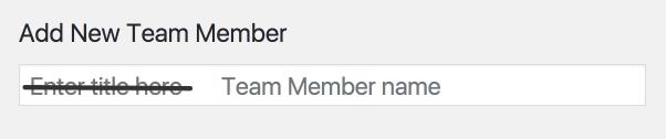 Team member name